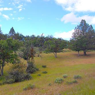 California Acreage Near Copco Lake - Image 1