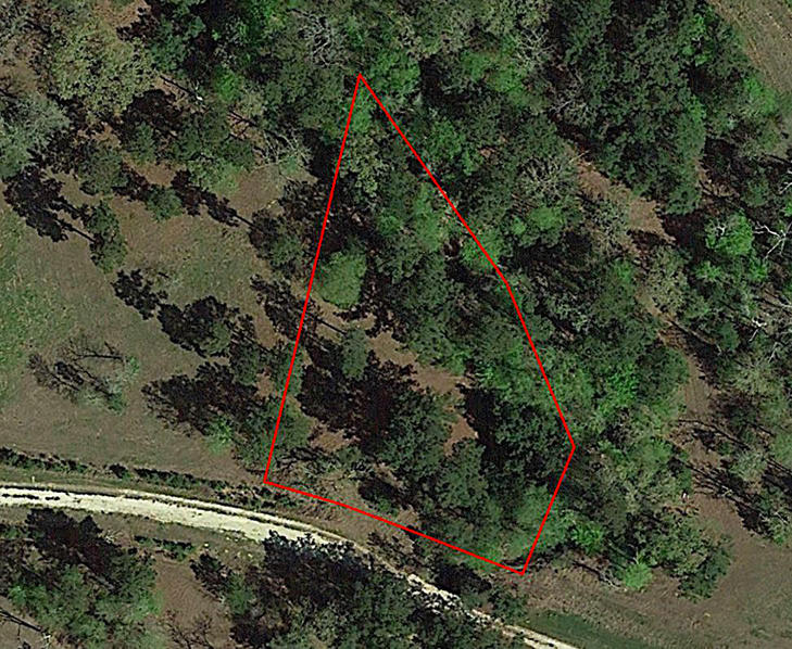 Large Texas Lot 90 Minutes from Houston - Image 2