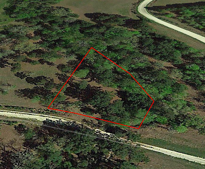 Large Texas Lot 90 Minutes from Houston - Image 3