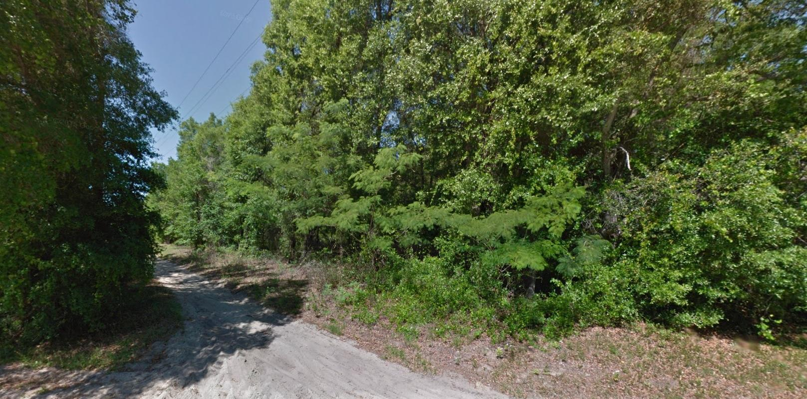Plenty of Options for this Acreage Property in Area with Many Lakes - Image 3
