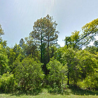 Plenty of Options for this Acreage Property in Area with Many Lakes - Image 0