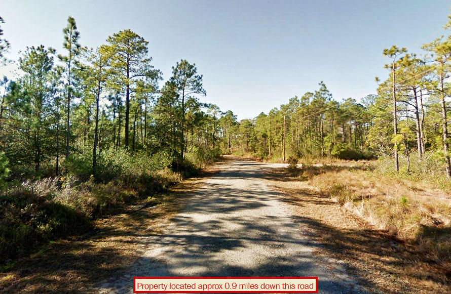 Private Land with Trees an Hour from the Beach - Image 4