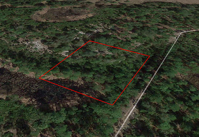 Over 1 Acre Lot Near Lake George - Image 2