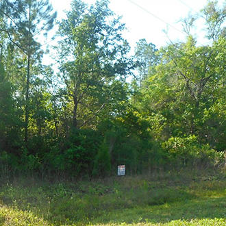 Tranquil Corner Lot located 1 Mile From The Saint Johns River - Image 0