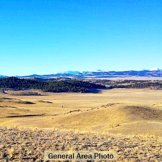 5 Acres Near Hartsel Colorado - Image 1
