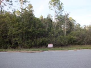 Milton Homesite on Paved Road - Image 5