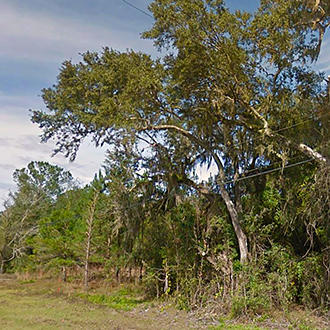 Two Acres in Community of Old Town Florida - Image 1