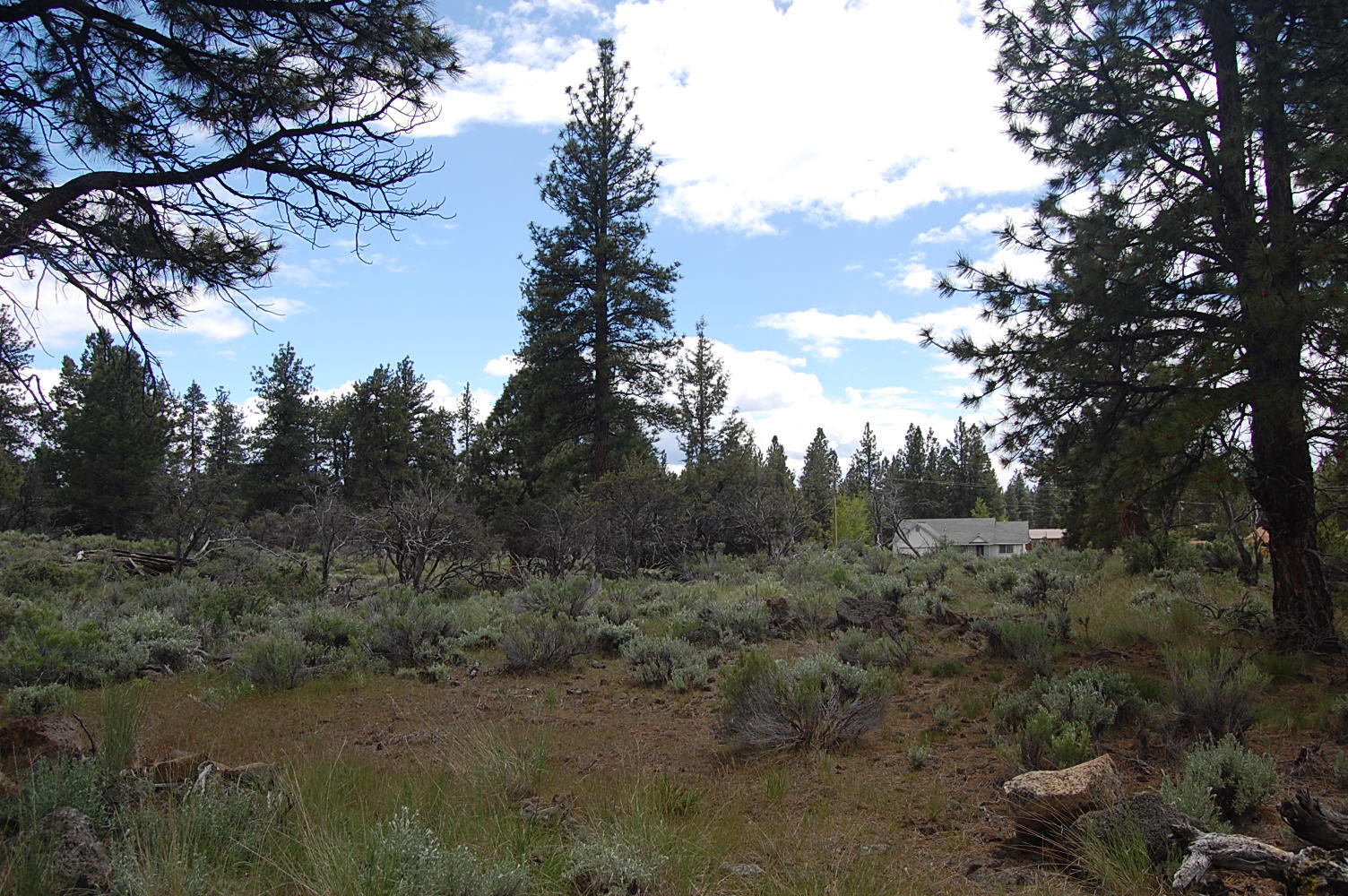Scenic California Property Near Eagle Lake - Image 3
