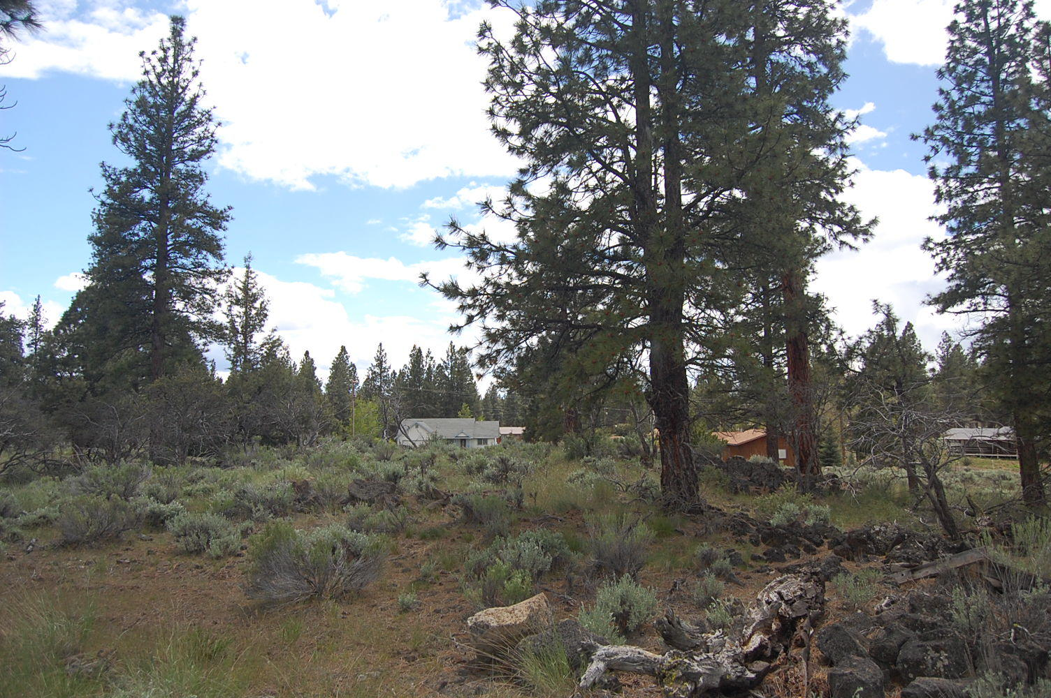 Scenic California Property Near Eagle Lake - Image 4