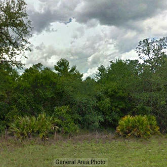 Undeveloped Lot off of Oakwood Road - Image 0