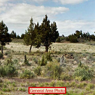 Acre of Land on the Edge of Christmas Valley - Image 0