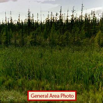 Large Acreage Parcel in Central Minnesota - Image 0