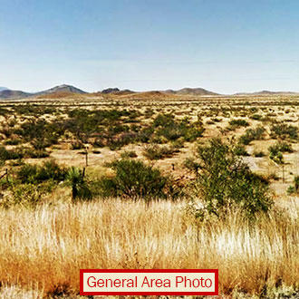 More than a Quarter Acre in Southern Arizona - Image 0