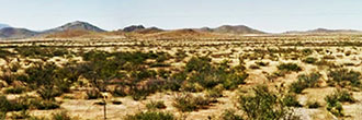 More than a Quarter Acre in Southern Arizona