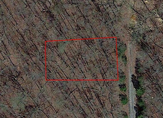 Quarter Acre Gem in the Ozarks of Northern Arkansas - Image 2