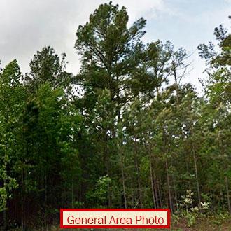 Seneca South Carolina Acreage With Partial Waterfrontage - Image 0