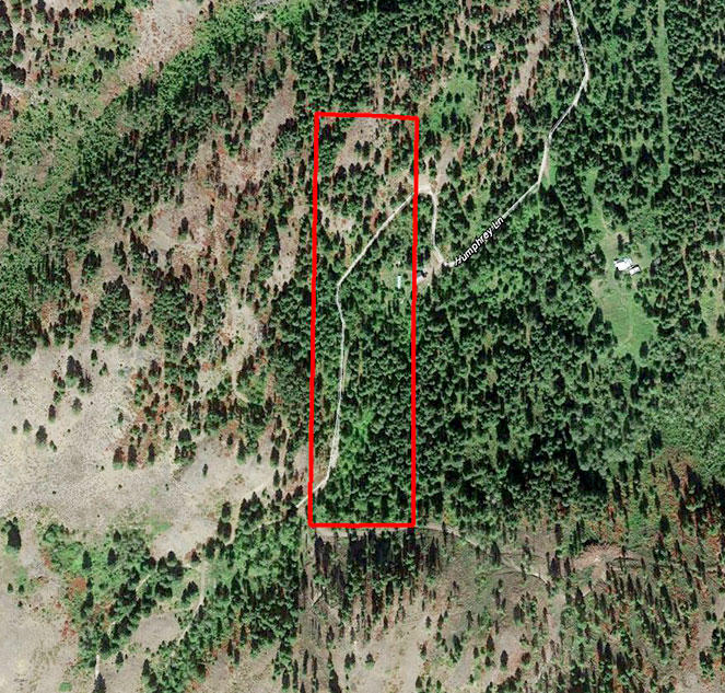 10 Acre Wooded Property in Northern Washington - Image 1