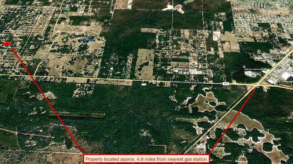 Central Florida Acreage an Hour from Gainesville - Image 4