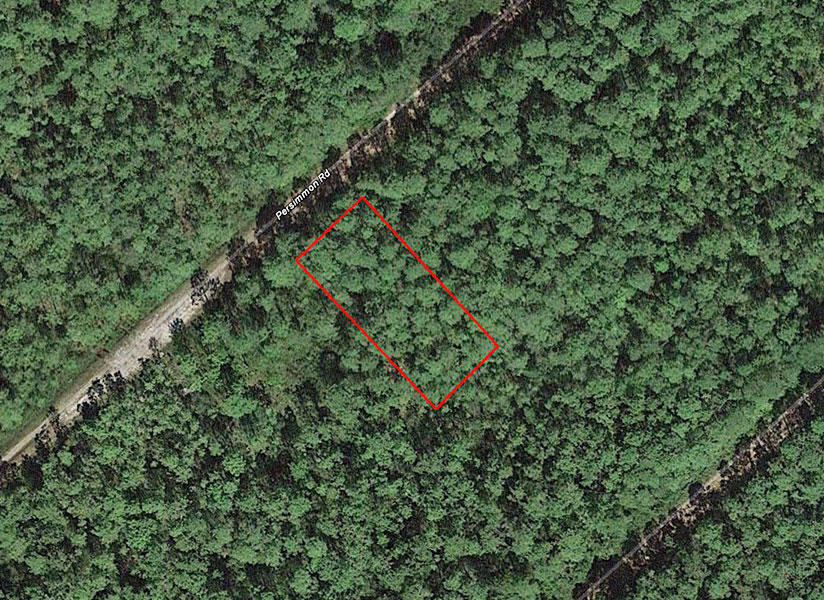 Wooded Property About 12 Miles to North Carolina's South Shore - Image 2