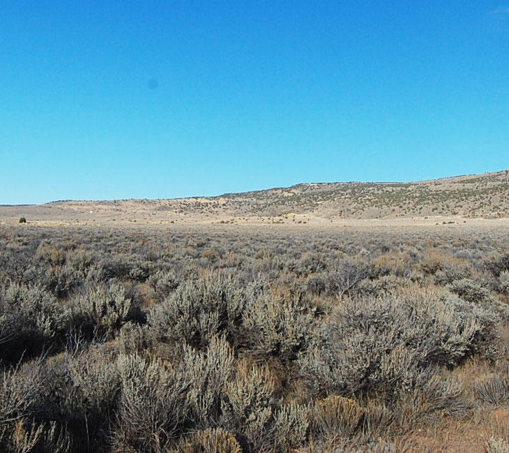 Gigantic 37 Acre Escape in Beautiful San Luis Valley - Image 3