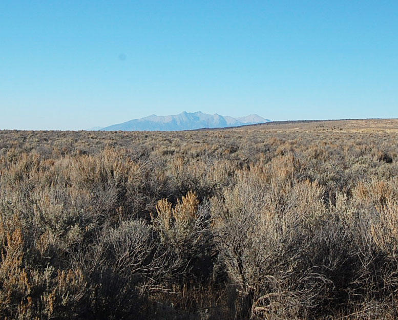 Gigantic 37 Acre Escape in Beautiful San Luis Valley - Image 5