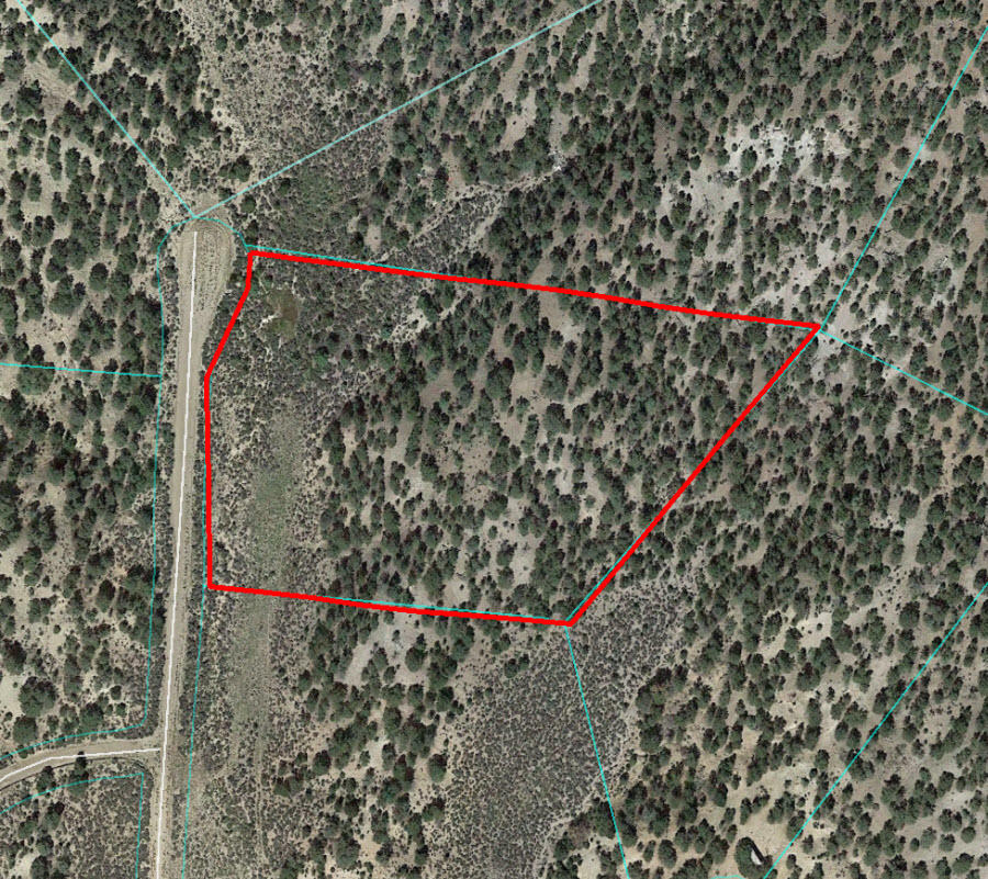 Five Acres in Beautiful Southern Colorado - Image 1