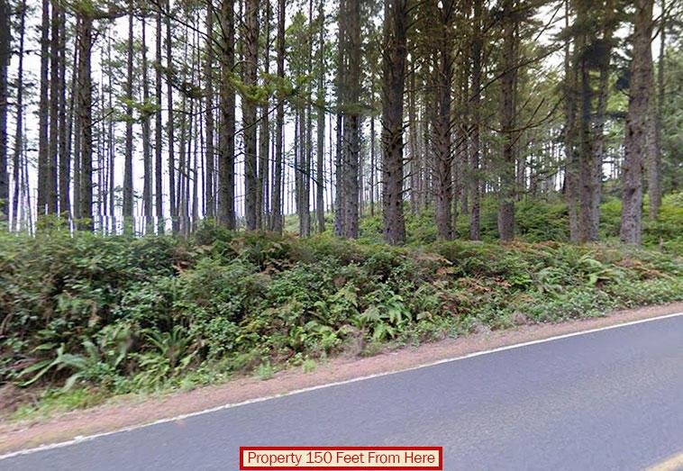 Hide Away on this Washington Coastal Property - Image 4