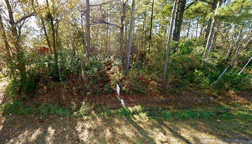 Escape to Beautiful North Carolina Near Pine Lake - Image 2