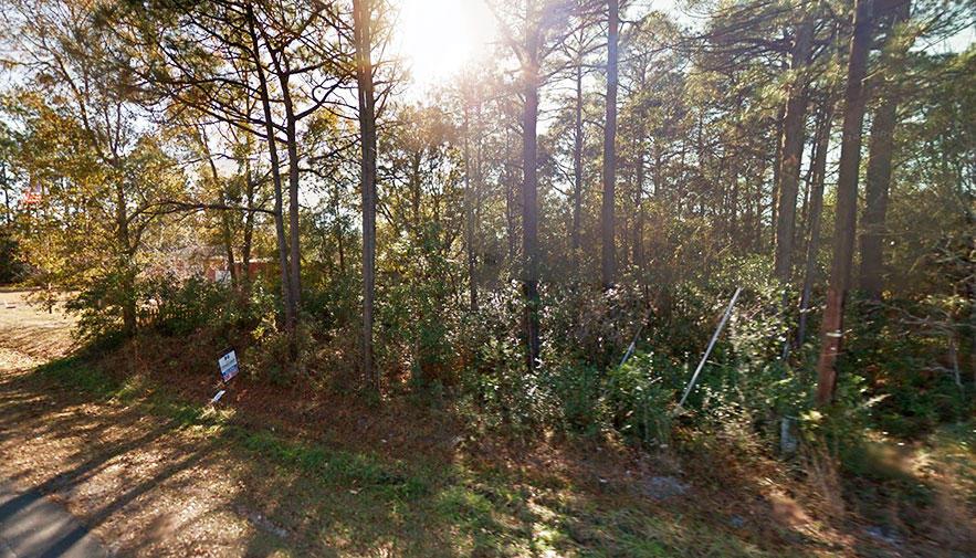 Escape to Beautiful North Carolina Near Pine Lake - Image 4