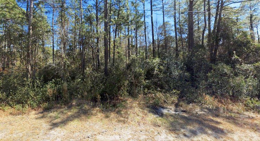 Quarter Acre Hideout in Beautiful North Carolina Community - Image 3