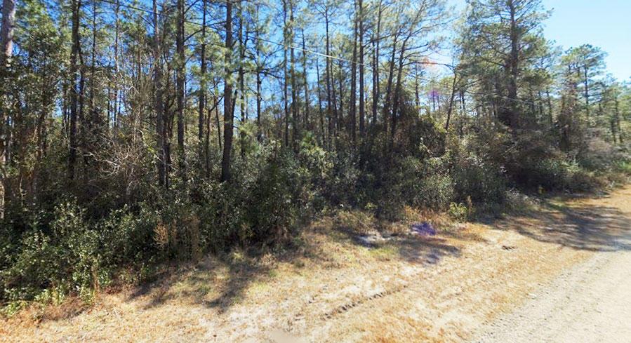Quarter Acre Hideout in Beautiful North Carolina Community - Image 4