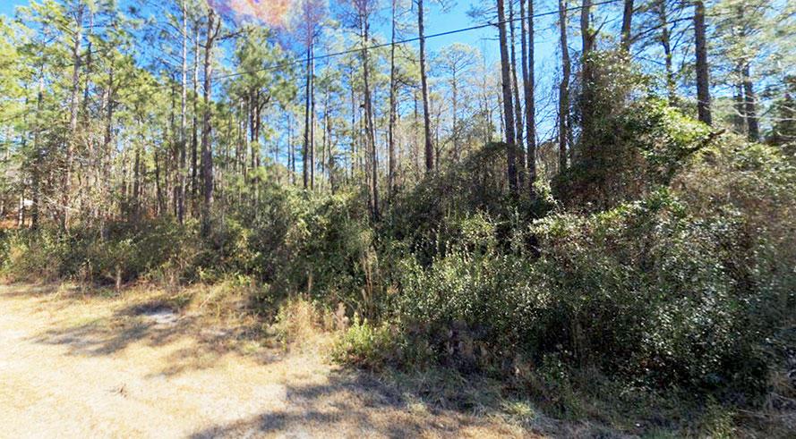 Quarter Acre Hideout in Beautiful North Carolina Community - Image 5