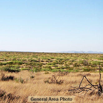Almost 6 Acres of Private West Texas Land - Image 1