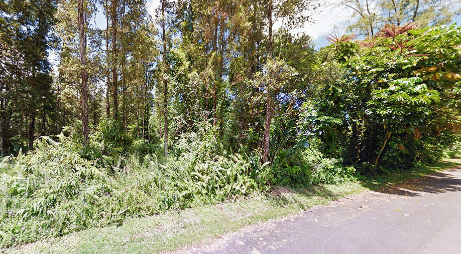 Lush Land Opportunity Near Beautiful Pahoa - Image 4