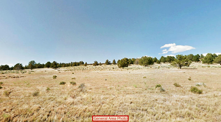 Wonderful Acreage Escape with Great Views - Image 2