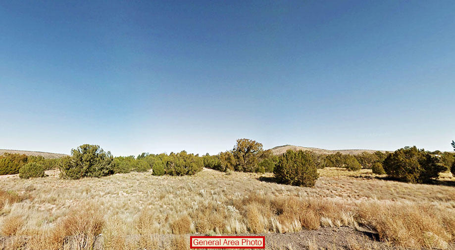 2 Acres Await in this High Desert Paradise - Image 2