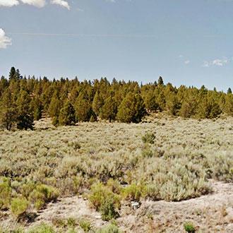 Prime Acreage on Beautiful Open Landscape - Image 0