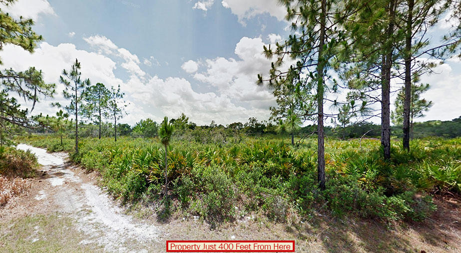 Florida Hideaway Near Several Great Fishing Lakes - Image 2