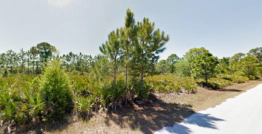 Quarter Acre Parcel Just Minutes From Harbor - Image 3