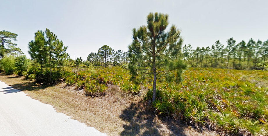 Quarter Acre Parcel Just Minutes From Harbor - Image 4