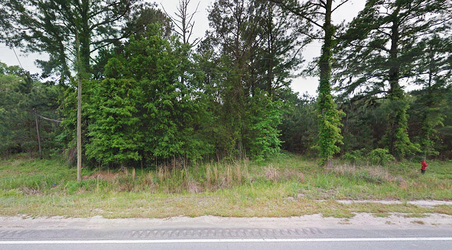 Snag This Peach of a Property in The Peach State - Image 3