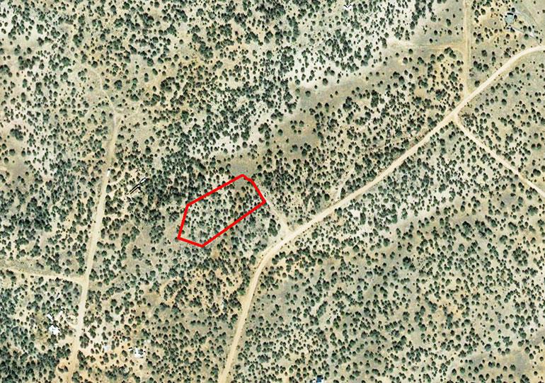 Escape to This Very Private Acreage in Northern Arizona - Image 1