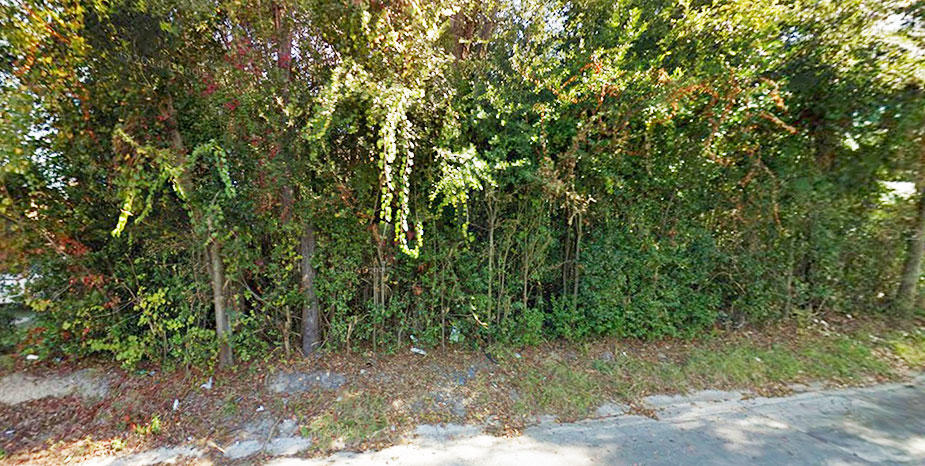Treed Lot on Paved Road in Attractive Waycross Neighborhood - Image 3
