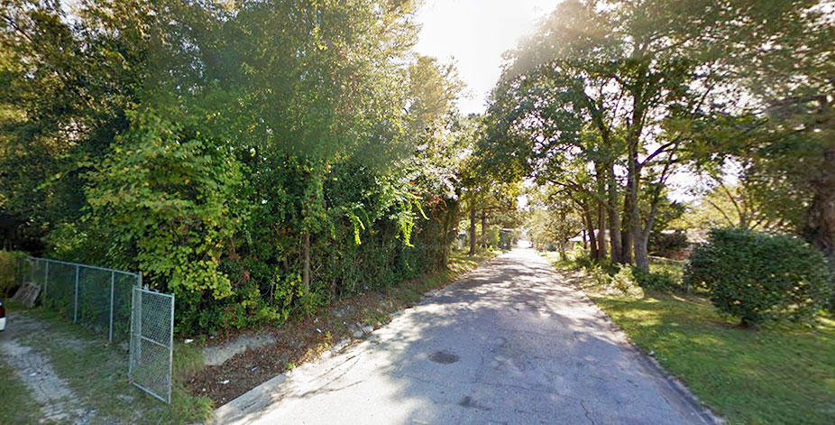 Treed Lot on Paved Road in Attractive Waycross Neighborhood - Image 4