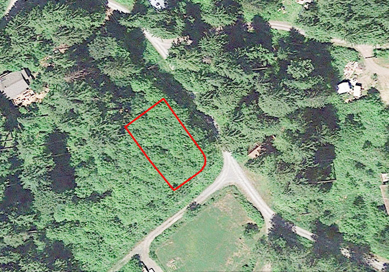 Enchanting Forest Property Near Skykomish River - Image 2