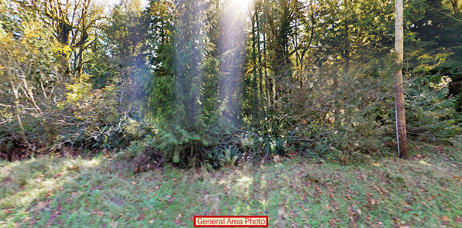 Enchanting Forest Property Near Skykomish River - Image 3