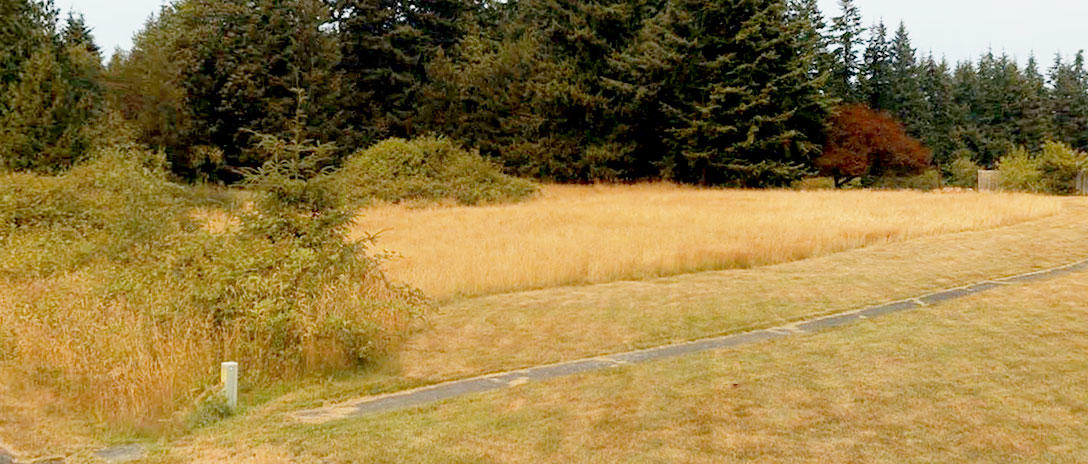 Nearly Half Acre on Famed Whidbey Island - Image 2