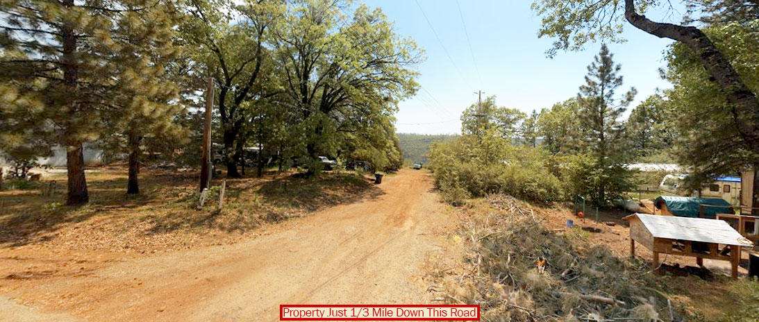 Make This Nearly Half Acre Land Yours In Northern California - Image 4