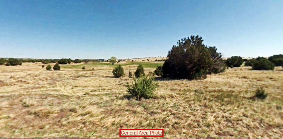 1+ Acre Hideaway near Concho Lake - Image 2