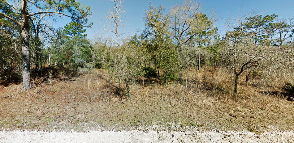 Nice treed lot on well maintained road - Image 3